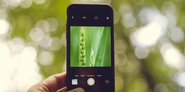 Мобильные приложения для агронома. Обзор лучших программ.