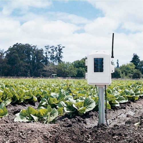 Станция беспроводная Davis для измерения влажности листьев, влажности и температуры почвы